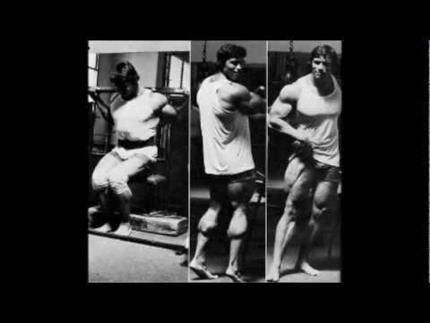 The Legend Of Arnold Schwarzenegger Gold s GYM Tribute