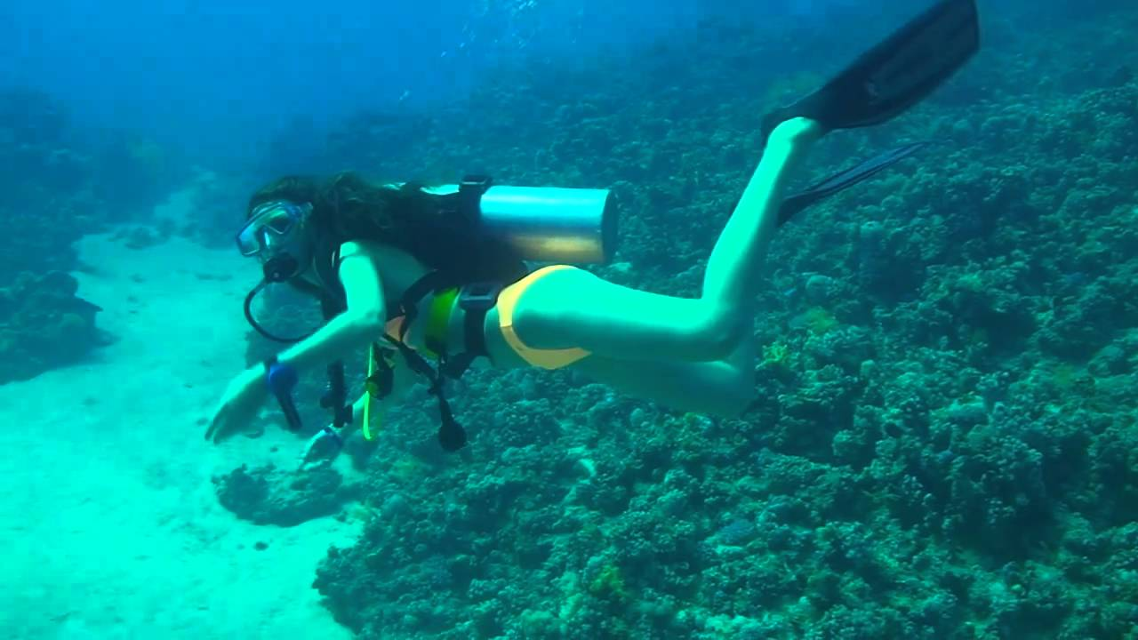 from Johan sexy girl scuba diving