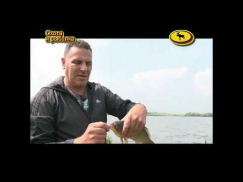 рыбалка на карася советы бывалых