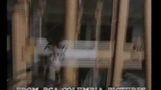 White Line Fever (1975)