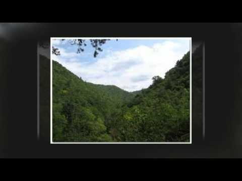 Tennessee Genealogy