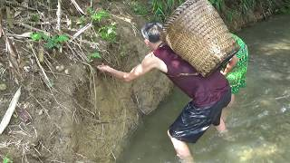 Survival skills: Build Fish Trap From Deep Hole Catch Big Fish - Cooking Delicious Fish
