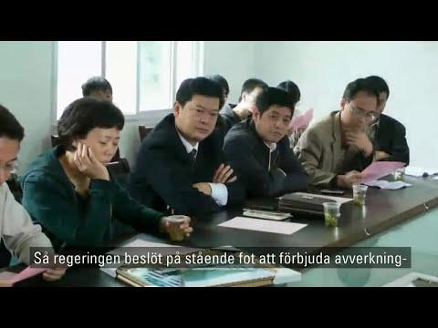 Volvo Environment Prize 2012, Swe subtitles (10:30 min)