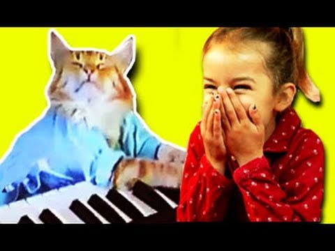 KIDS REACT to Keyboard Cat