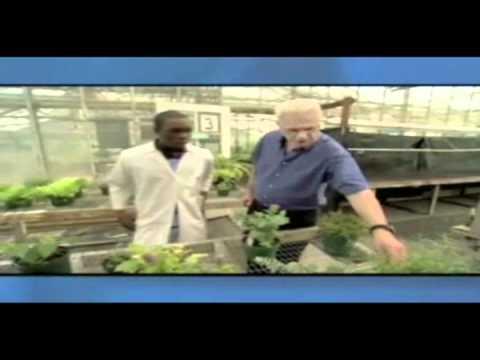 Medical Marijuana Infomercial by Washington ACLU