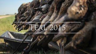 Nebraska Duck Hunting:  Early Teal Season