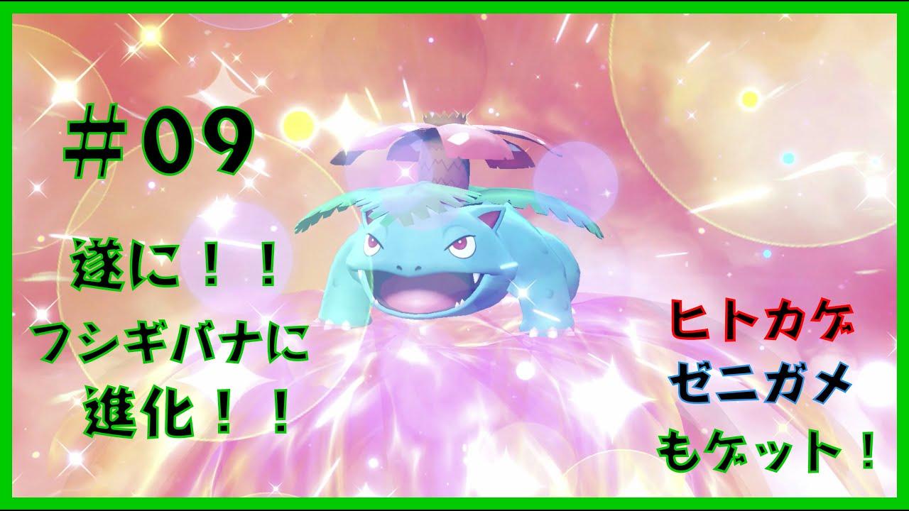 ゼニガメ 進化 ピカブイ
