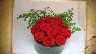 Naturaleza Exquisita - Arreglos Florales- Flores naturales preservadas-Caracas-Venezuela