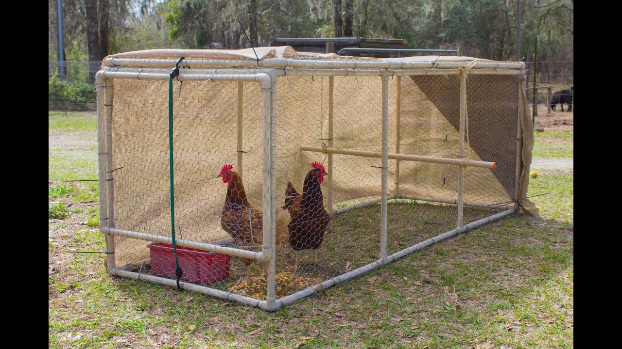 How big should my chicken coop be youtube for Homemade chicken house