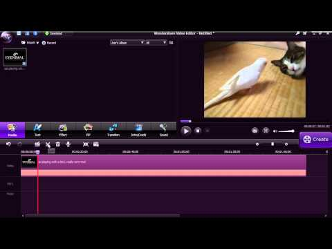 Using Wondershare Video Editor