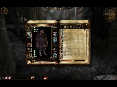 Dragon Age Video Review
