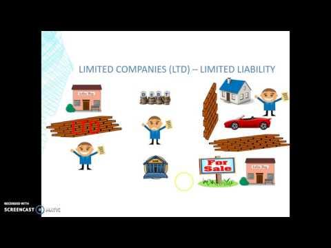 Edexcel GCSE Business - Limited Liability