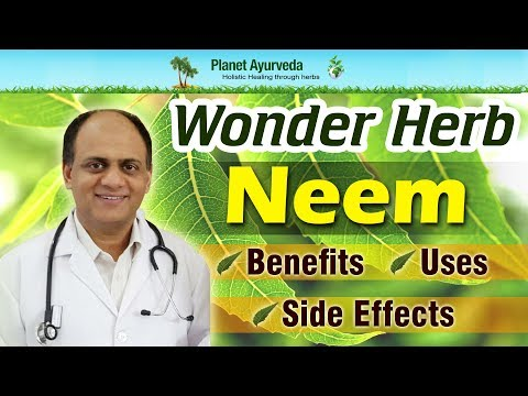 Wonder Herb- Neem Benefits, Uses and Side Effects