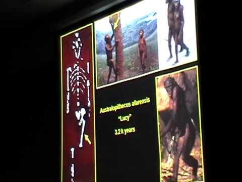 Taft Lecture, Anthropology: Dr. Brigitte Demes 1/8