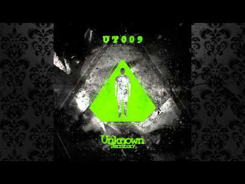 The Welderz The Old Box Original Mix UNKNOWN TERRITORY