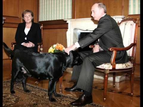 Gia đình Obama, Trương Tấn Sang,  Putin và chó cái