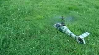 Comanche Esky outside flying