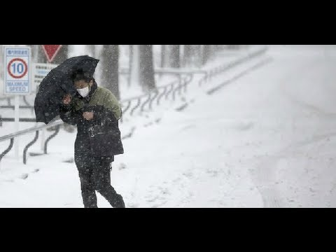 Severe storm warnings in Tokyo after heavy snow