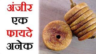 Health Tips in Hindi - Anjeer Benefits - Health Tips In Hindi By Sachin Goyal - अंजीर के लाभ