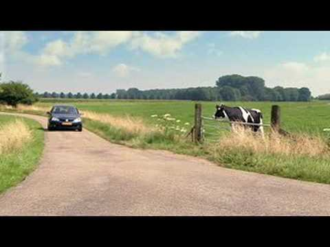 New Fiat Bravo commercial