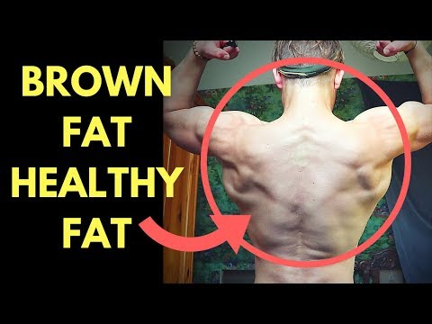 BROWN FAT VS WHITE FAT - How to Increase Brown Fat the Healthy Fat