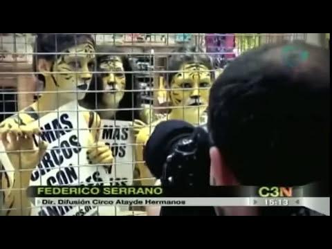 Aumenta el maltrato animal en los circos