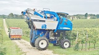New Holland Braud VL 6080 Grape Harvester