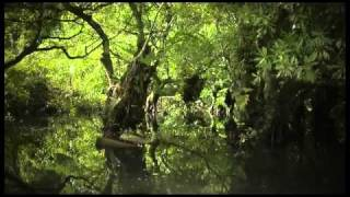 "THA FEELSTYLE FT. ADEAZE ""SOMETIMES WHEN IT RAINS"" - MUSIC VIDEO 2010"