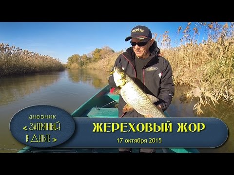 видео рыбалка в мае на раскатах