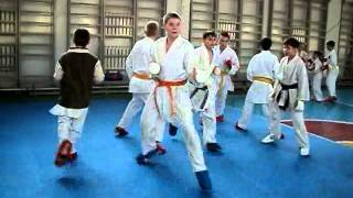 Training in karate - 2013
