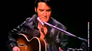 Watch Elvis Presley Baby What You Want Me To Do video