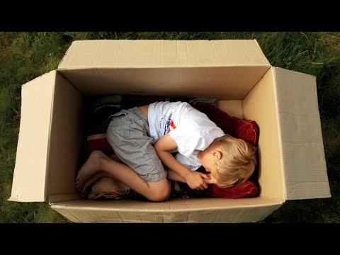 Thumbnail of video The Adventures of a Cardboard Box.mov