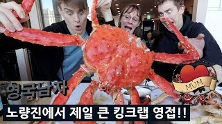 I found the BIGGEST King Crab I could in Korea for my Mum...🦀😱