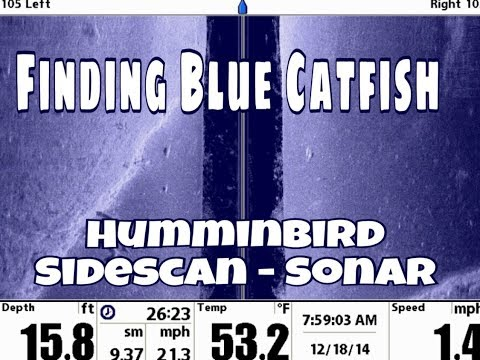 Lake Tawakoni Fishing Guide Michael Littlejohn. Finding Blue Cats on Sonar 903-441-3937