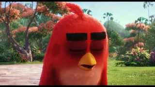 The Angry Birds Movie - Official Tamil Teaser Trailer