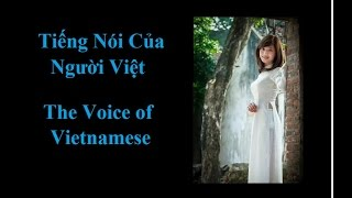 Sấm Trạng Trình Nguyễn Bỉnh Khiêm tiên đoán xã hội Việt Nam dưới triều Công Sản