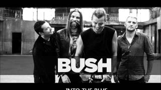 Watch Bush Into The Blue video