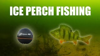 PERCH FISHING from the ICE (using a Deeper sonar)