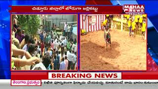 Jallikattu Bull Fight in Chittoor District | Huge turnout of youths for Jallikattu