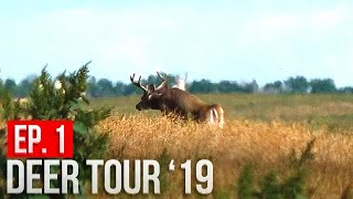 North Dakota Public Land - WE FOUND BUCKS AND A BIG SURPRISE!  | Deer Tour '19 E1