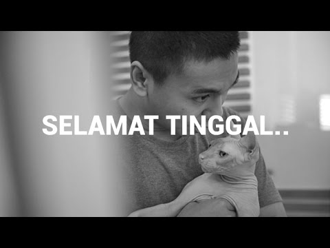 Download Lagu SELAMAT TINGGAL, KESAYANGAN.. MP3 Free
