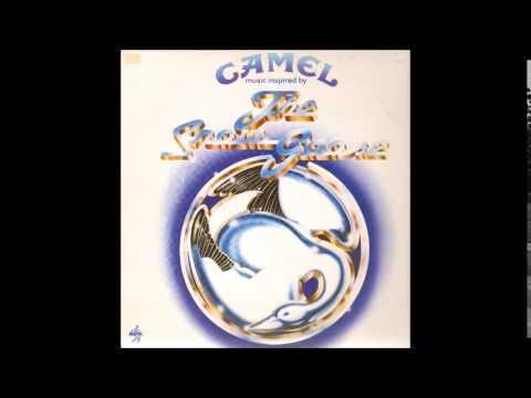 Camel - Fritha