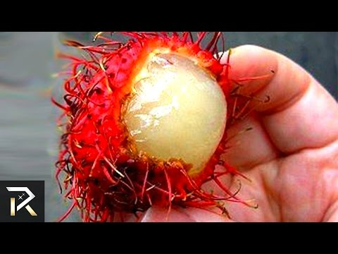 Exotic Foods That Can Actually Kill You