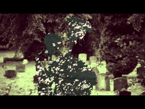 Bibio -  tout  l'heure