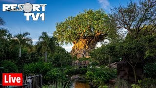 🔴Live: Disney's Animal Kingdom Friday Fun 1080p - Walt Disney World Live Stream 10-4-19