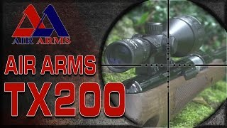 Air Arms TV - Airgun Hunting: Feral Pigeon Shooting