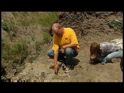 Canadian Fossil Discovery Centre - Media Coverage by CBC's The National Video