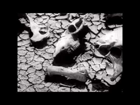 Hank Williams III - Stoned And Alone