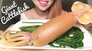 ASMR CURED CUTTLEFISH | SOTONG KANGKUNG | COOKING + SAVAGE EATING SOUNDS (No Talking)