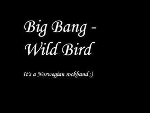 Big Bang - Wild Bird